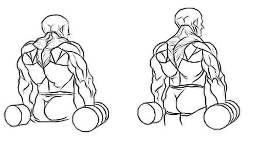 10 exercises for Mass & Strength building! | 6 Pack Lapadat